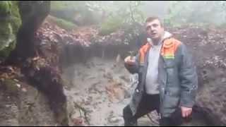 Bıçkıdere deki talanın görüntüleri