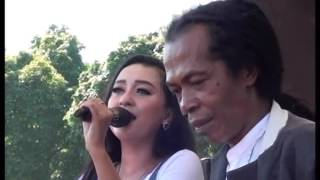 Video MONATA - SBC Ujungnegoro - Tresno Waranggono -  Elsa Feat Shodiq download MP3, 3GP, MP4, WEBM, AVI, FLV Maret 2018