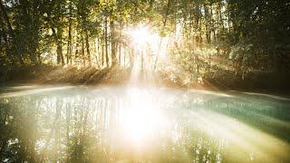 Leven vanuit je innerlijke bron | Anandajay