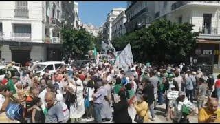 شاهد 🇩🇿 |  الشعب يريد الاستقلال.. هتافات الطلبة في الجزائر بالثلاثاء 28 للحراك