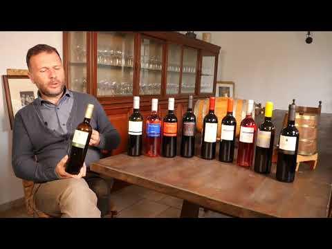 Bacchus Wine Box - Catapanus di D'Alfonso del Sordo