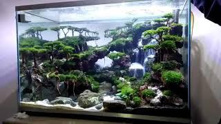 Ini Baru Aquascape Good Aquascape Aquarium Waterfall Air Terjun Pasir Youtube