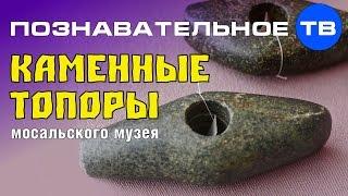 Неудобная история  Каменные топоры Мосальского музея (Познавательное ТВ, Артём Войтенков)