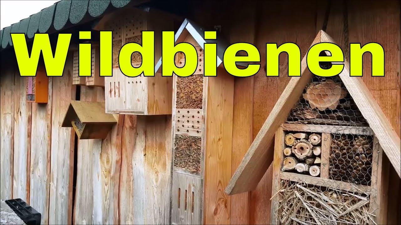 wildbienen und mauerbienen im garten ansiedeln vermeiden sie diesen fehler youtube. Black Bedroom Furniture Sets. Home Design Ideas