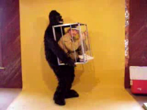 & WALKING ILLUSIONS GORILLA