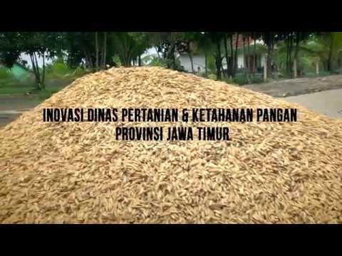 Inovasi Dinas Pertanian Ketahanan Pangan Prov Jatim Youtube