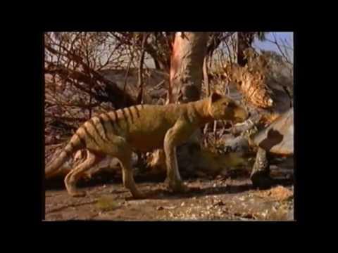 Prehistoric Australia, Ray Harryhausen Style