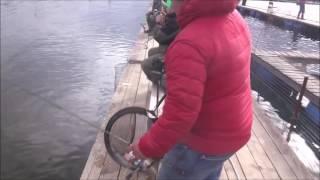 видео Велинка платная рыбалка сайт