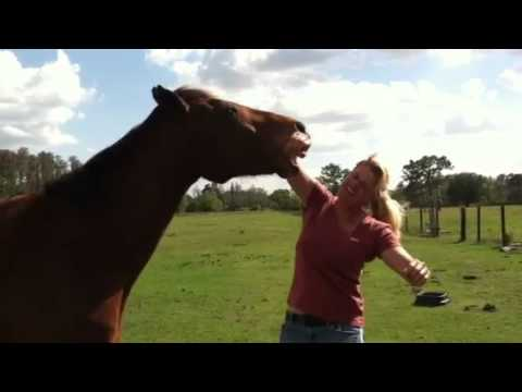 Woman eating Horse!!! from YouTube · Duration:  9 seconds