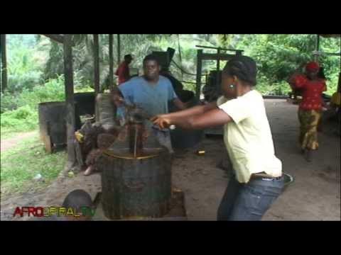 How Red Palm Oil is made