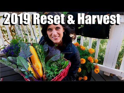 2019 Reset & Harvest
