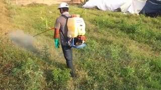 WEED KILLER   Glyphosate-What is Glyphosate-how Glyphosate-the weed killer  works? ROUND UP