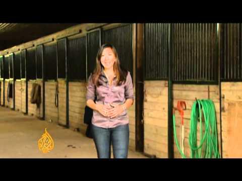 Horse Drug Debate In US