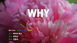 [은성 반주기] WHY - 베이비복스