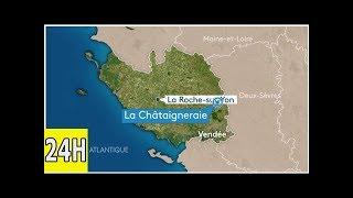 Vendée : tremblement de terre à la châtaigneraie