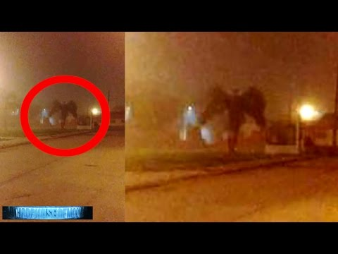 Scary As HELL!! Mothman Returns! Demonic Dark Angel? Arcturians Message! Italy UFO 2/7/17