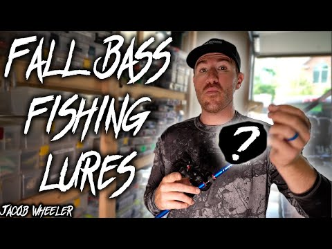Top 3 BAITS I catch BASS on during the FALL Transition