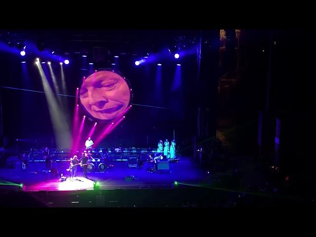 Pink Floyd Tribute   Money   Auditorium Parco della Musica
