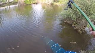 Отличная рыбалка на карася воблу и сазана Астрахань 2020