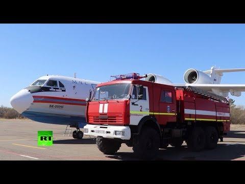В Приамурье из-за лесных пожаров действует режим ЧС
