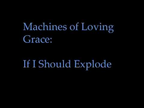 Machines of Loving Grace -- If I Should Explode