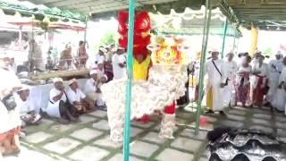 Video barongsay barongsai naga denpasar show di pura campuhan padang galak sanur Bali download MP3, 3GP, MP4, WEBM, AVI, FLV Juni 2018