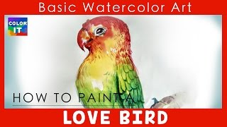 How to Paint Love Bird with Watercolor step by step | how to draw love bird | Quick and easy