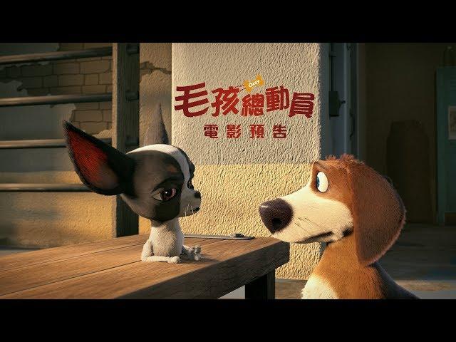 【毛孩總動員】(Ozzy) 電影預告 6/29(五)開心fun暑假