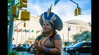 Stand with Indigenous Peoples of Brazil, the Amazon and the Climate