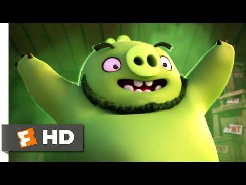 The Angry Birds Movie - Pig Parade Scene | Fandango Family