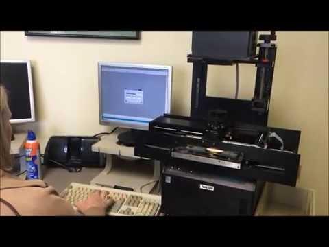 Microfiche Conversion To Digital