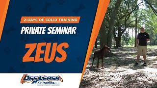 What Is Possible With 2-days Of Solid Training? Nick White Private Seminar!