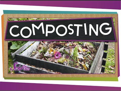 Make The Most Of Compost!