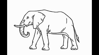 """How to draw """"African elephant full body"""" pencil drawing step by step"""