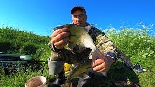 Озеро РАЗДАЁТ ЛЕЩЕЙ Рыбалка на Леща Ловля Леща на озере Рыбалка на леща ранним утром