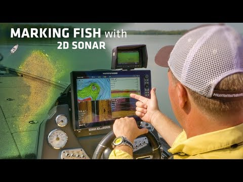 Comparing Bass on Fishfinder Sonar to Real-Time Underwater V