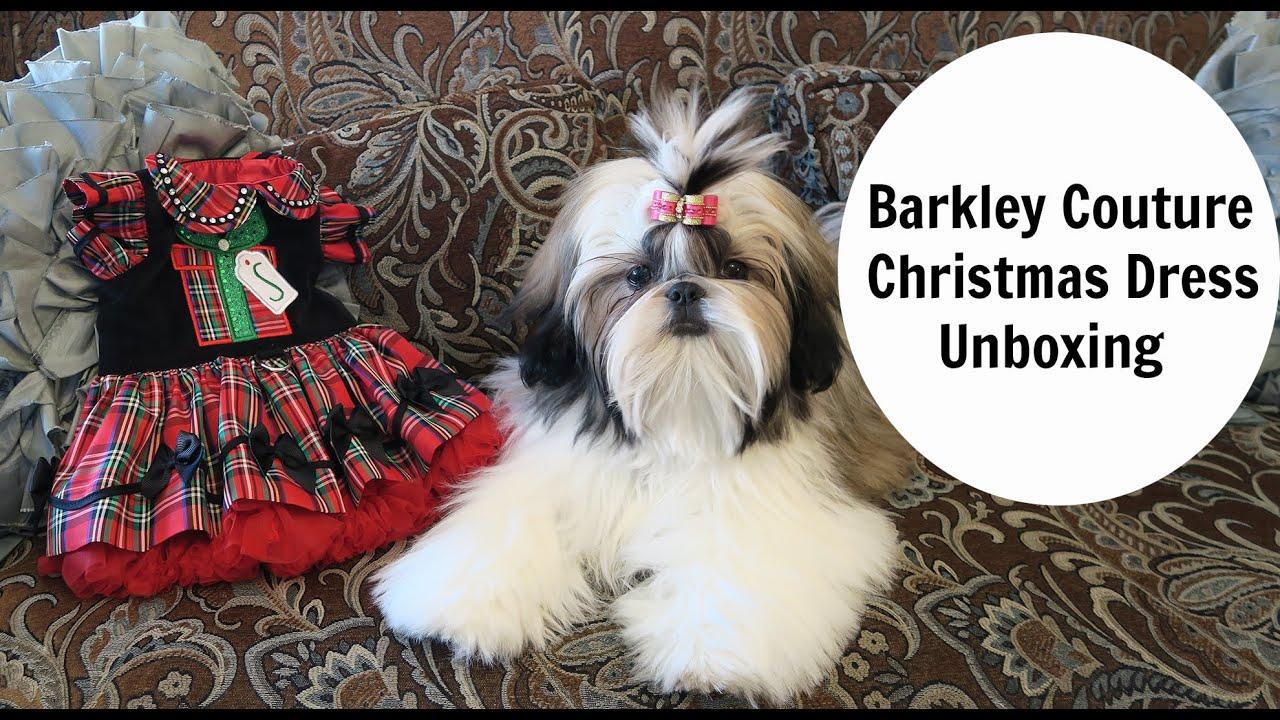christmas dog dress unboxing