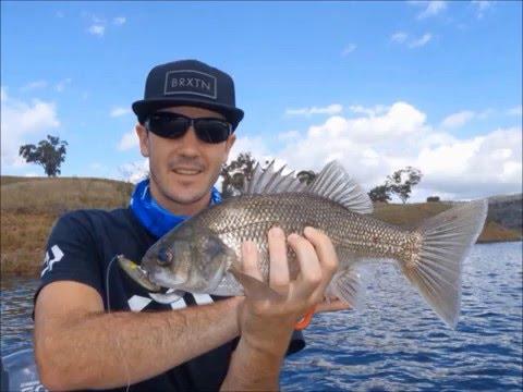 Rough Diamond Fishing - Glenbawn Dam 2015 Ethnic Bass Classic