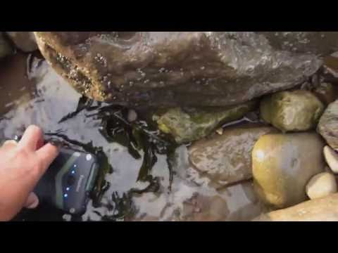 EasyAcc Rugged Power Bank IP67 Rating Twin USB Ports  TEST of the SEA!