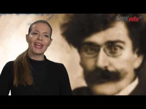 Vladislav Petkovic Dis biografija ukratko