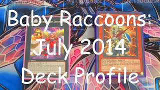 Yugioh July 2014 Baby Raccoon Deck Profile!