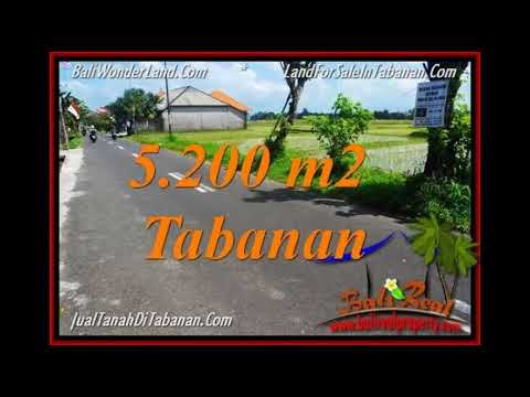 Affordable PROPERTY LAND IN Tabanan Kediri BALI FOR SALE TJTB351