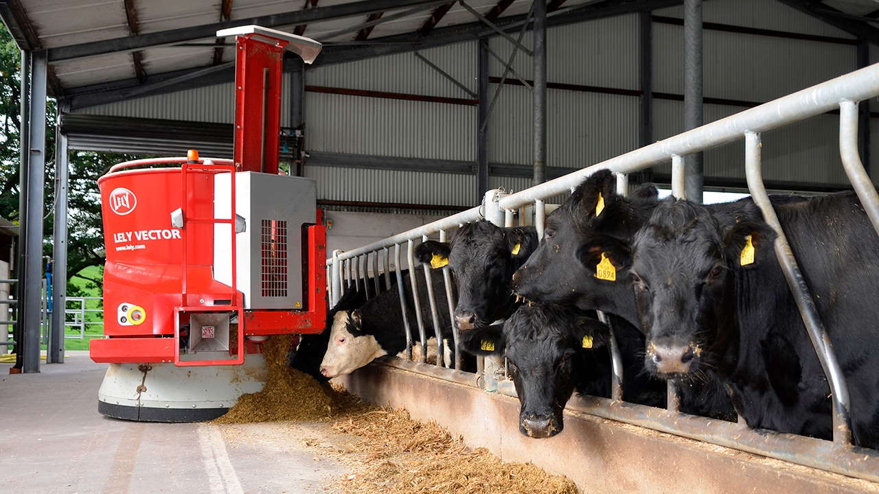Lely Vector testimonial - Glen South Farm (Polish / Ireland)