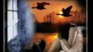 Gambar cover By_SeDaT!!!Eyuphan Düşman Oluruz