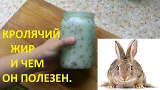 Кролячий жир и его польза. Шкварки.