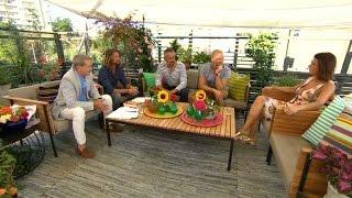 Sommarpanelen om semesteravgiftning och skämskuddar - Nyhetsmorgon (TV4)