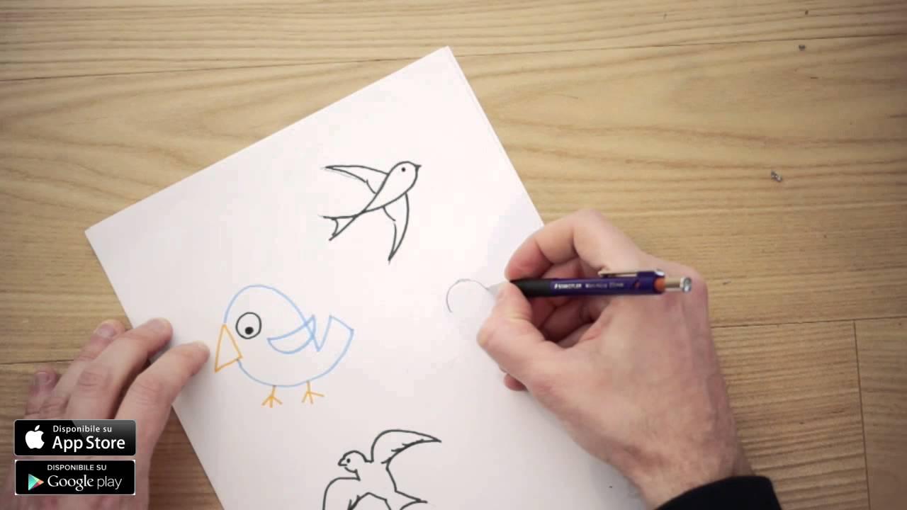 Disegni di uccelli da colorare per bambini come disegnare for Disegni di natale facili per bambini