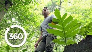 Vietnam's Paranormal Portal   Hanoi, Vietnam 360 VR Video   Discovery TRVLR