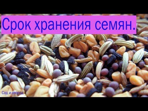 Правила хранения пищевых продуктов
