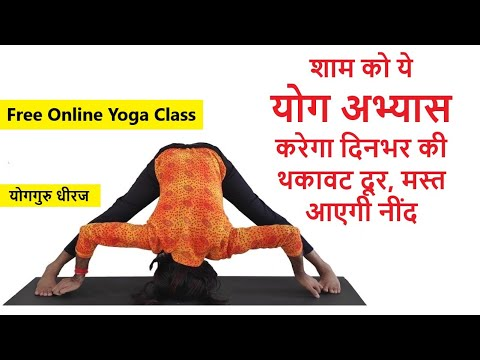 evening basic yoga asana pranayam sequence  yoga guru